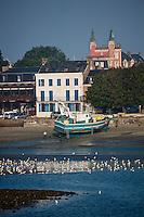 Europe/France/Picardie/80/Somme/Baie de Somme/ Le Crotoy: La plage, le village et l'Hôtel: Les Tourelles