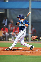 GCL Rays catcher Roberto Alvarez (6) follows through on a swing during the first game of a doubleheader against the GCL Twins on July 18, 2017 at Charlotte Sports Park in Port Charlotte, Florida.  GCL Twins defeated the GCL Rays 11-5 in a continuation of a game that was suspended on July 17th at CenturyLink Sports Complex in Fort Myers, Florida due to inclement weather.  (Mike Janes/Four Seam Images)