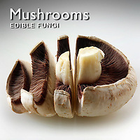 Mushrooms | Mushrooms Food Pictures Photos Images & Fotos