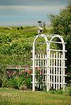 Arbor with bird house