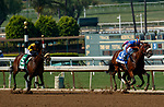 "ARCADIA, CA  SEP 27:  #3 Harvest Moon, ridden by Flavien Prat, passes #1 Fighting Mad, ridden by Luis Saez, with a fast closing #5 Hard Not to Love, ridden by Mike Smith, in the stretch of the Zenyatta Stakes (Grade ll) ""Win and You're Breeders' Cup Distaff Division"" on September 27, 2020 at Santa Anita Park in Arcadia, CA. (Photo by Casey Phillips/Eclipse Sportswire/CSM."
