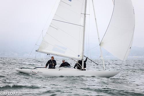 Cameron Good's Dragon 'Little Fella' leads on Dublin Bay