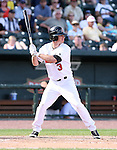 Great Lakes Loons 2008