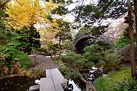 Japanese Tea Garden, Golden Gate Park, San Francisco. Drum Bridge