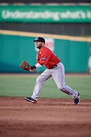 Pawtucket Red Sox second baseman Dustin Pedroia (15) during a game against the Rochester Red Wings on May 19, 2018 at Frontier Field in Rochester, New York.  Rochester defeated Pawtucket 2-1.  (Mike Janes/Four Seam Images)