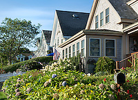 Quaint Chatham houses, Cape Cod, Massachusetts, USA