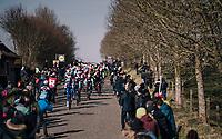 Iljo Keisse (BEL/QuickStep Floors) leading the peloton over the Haaghoek cobbles<br /> <br /> Omloop Het Nieuwsblad 2018<br /> Gent › Meerbeke: 196km (BELGIUM)