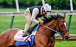 April 25, 2021: Clairiere, trained by trainer Steve Asmussen, exercises in preparation for the Kentucky Oaks at Churchill Downs on April 25, 2021 in Louisville, Kentucky. John Voorhees/Eclipse Sportswire/CSM