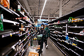 Brooklyn, New York<br /> March 17, 2020<br /> 6:49 PM<br /> <br /> Whole Foods in Park Slope, Brooklyn under coronavirus pandemic. <br /> <br /> Shopper with face mask and gloves scavenges mostly empty shelves as people hoard food in fear of the virus spreading and creating shortages.
