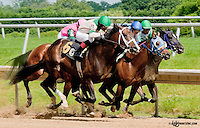 Moon Harbor winning at Delaware Park on 6/19/13