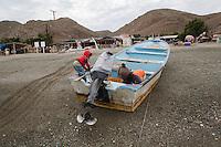 America,Mexico,Baja California,Baja Magdalena