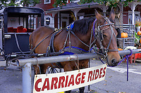 Amish buggy rides, Bird in Hand, Lancaster, Pennsylvania, USA