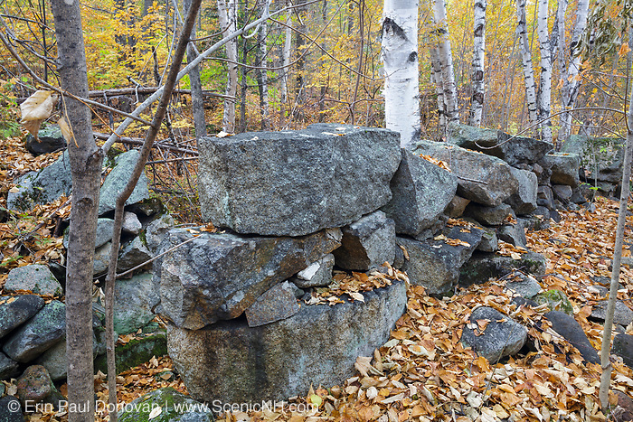 Remnants of the Goulding house in the village of Livermore in the New Hampshire White Mountains. This was a logging village in the late 19th and early 20th centuries along the Sawyer River Railroad. The town and railroad were owned by the Saunders family.