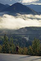 Alaska railroad train trestle tracks over Riley Creek, Denali National Park, Alaska
