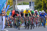 Jensen Plowright (left) passes Aaron Gate to win stage three. Stage Three - Te ara roa (Te Awamutu circuit). 2019 Grassroots Trust NZ Cycle Classic UCI 2.2 Tour from Te Awamutu in Cambridge, New Zealand on Friday, 25 January 2019. Photo: Dave Lintott / lintottphoto.co.nz