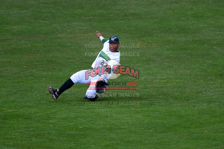 Jamestown Jammers outfielder Harold Ramirez (23) attempts to catch a fly ball during a game against the Brooklyn Cyclones on August 4, 2013 at Russell Diethrick Park in Jamestown, New York.  Jamestown defeated Brooklyn 9-5.  (Mike Janes/Four Seam Images)
