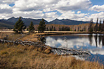 pond, meadow forest, mountain, sky, Never Summer Mountains, October, nature, landscape, scenic, Kawuneeche Valley, Rocky Mountain National Park, Colorado, Rocky Mountains, USA