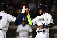 Catcher Ali Sanchez (20) of the Columbia Fireflies, right, is congratulated after scoring a run in a game against the Augusta GreenJackets on Opening Day, Thursday, April 6, 2017, at Spirit Communications Park in Columbia, South Carolina. Columbia won, 14-7. (Tom Priddy/Four Seam Images)