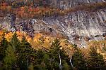 Fall foliage on Mt Willard, Crawford Notch State Park, White Mountains, NH, USA