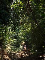 Pamulaklakin Jungle walk in the Pampanga area, Philippines