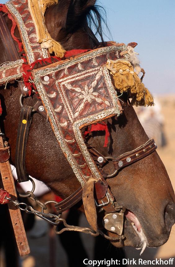 algerische Reiter, Festival in Douz, Tunesien