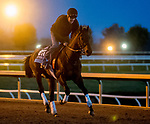November 1, 2020: Gretzky The Great, trained by trainer Mark E. Casse, exercises in preparation for the Breeders' Cup Juvenile Turf at Keeneland Racetrack in Lexington, Kentucky on November 1, 2020. Scott Serio/Eclipse Sportswire/Breeders Cup /CSM