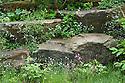 The Laurent-Perrier Chatsworth Garden designed by Dan Perarson, RHS Chelsea Flower Show 2015.