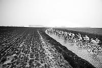 """peloton over the Holleweg (""""Hollow Way"""") cobbles<br /> <br /> 57th E3 Harelbeke 2014"""
