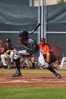 Colorado Rockies Rosell Herrera (7) during an instructional league game against the San Francisco Giants on October 7, 2015 at the Giants Baseball Complex in Scottsdale, Arizona.  (Mike Janes/Four Seam Images)