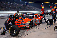 HOMESTEAD, FL - NOVEMBER 19, 2006:   Jeff Burton, at the NASCAR Nextel Cup Series Ford 400, on November 19, 2006 at Homestead-Miami Speedway in Homestead, Florida<br /> <br /> <br /> People:  Jeff Burton