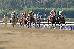 Nov. 02, 2012 - Arcadia, California, U.S - The field during lap one in the Breeders' Cup Marathon (Grade II) at Santa Anita Park in Arcadia, CA. (Credit Image: © Ryan Lasek/Eclipse/ZUMAPRESS.com)