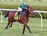 Green Mask (no. 4) wins the Troy Handicap August 6 at Saratoga Race Course, Saratoga Springs, NY.  The winner, ridden by Javier Castellano and trained by Brad Cox, won by 1 3/4 lengths in the 5 1/2 Furlong race against 6 opponents on the Turf.  (Bruce Dudek/Eclipse Sportswire)