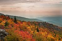 Autumn morning light on Rough Ridge, Blue Ridge Parkway