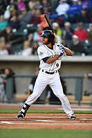 Right fielder Gene Cone (9) of the Columbia Fireflies bats in a game against the Augusta GreenJackets on Opening Day, Thursday, April 6, 2017, at Spirit Communications Park in Columbia, South Carolina. Columbia won, 14-7. (Tom Priddy/Four Seam Images)