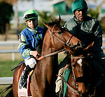 Feb 2010:  Worldly and Patrick Valenzuela before the Risen Star Stakes at the Fairgrounds in New Orleans, La.