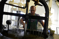 Austria Styria, cultivation of pumpkin, the seeds are used for processing of pumpkin seed oil, oil mill Fehring / Oesterreich Steiermark, Anbau von Kuerbis, Verarbeitung zu Kuerbiskernoel in Oelmuehle Fehring, traditionelle Handarbeit in einer historischen Wassermuehle
