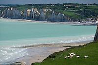 Europe/France/Normandie/Haute-Normandie/76/Seine-Maritime/ Varengeville-sur-Mer: Depuis l'église du cimetière marin vue sur les paturages  du Pays de Caux et les falaises  de la Côte d'Albatre