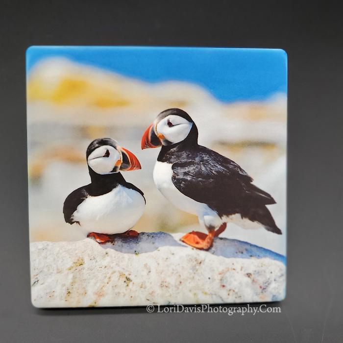 Sandstone Coaster Puffins