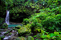 Natural waterfall at the beautiful Emerald Pool and lush vegetation of the rainforest of Commonwealth of Dominica, Caribbean Leeward Islands