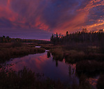 Sunset over a stream in the  Chequamegon National Forest in northern Wisconsin.