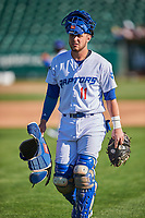 Tre Todd (11) of the Ogden Raptors before the game against the Grand Junction Rockies at Lindquist Field on June 15, 2019 in Ogden, Utah. The Raptors defeated the Rockies 12-11. (Stephen Smith/Four Seam Images)