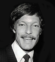 Richard Chamberlain 1980s Photo By John Barrett/PHOTOlink