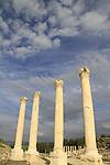 Ruins of the Roman-Byzantine city Scythopolis, marble columns at the colonnaded Palladius street
