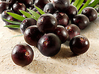 Stock pictures & images of the acai berries the super fruit anti oxident from the Amazon. The acai berry has been associated with helping weight loss.