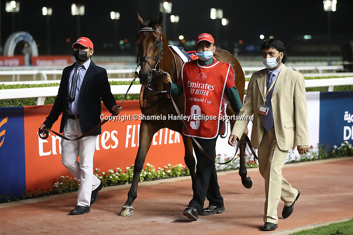 March 27 2021: MILITARY LAW (GB) #9, in the post parade for the Dubai World Cup at Meydan Racecourse, Dubai, UAE. Shamela Hanley/Eclipse Sportswire/CSM