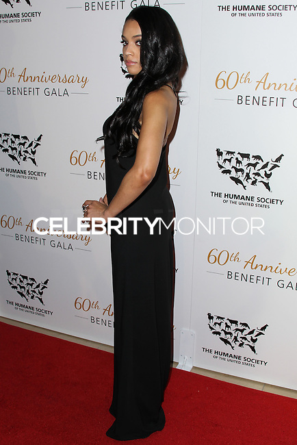 BEVERLY HILLS, CA, USA - MARCH 29: Bianca Lawson at The Humane Society Of The United States 60th Anniversary Benefit Gala held at the Beverly Hilton Hotel on March 29, 2014 in Beverly Hills, California, United States. (Photo by Xavier Collin/Celebrity Monitor)