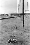A simple cross and flowers makes the place where Junior died besides a railway track 1999 Santo,Texas 1990s USA