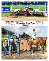 2 part winphoto finish, winner's circle and race info printed 8x10 and larger