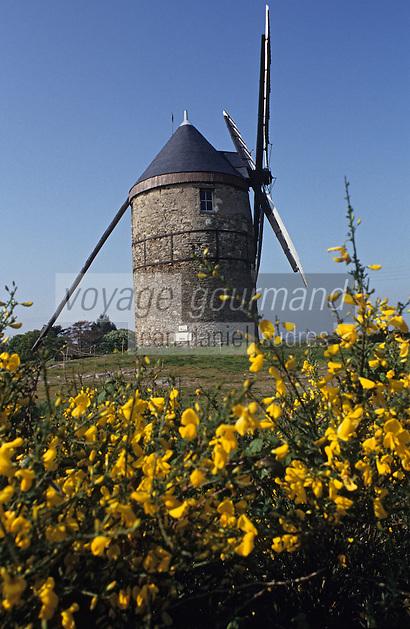 Europe/France/Pays de la Loire/49/Maine-et-Loire/Env de Mazé: Le moulin de la Roche
