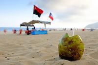 A coconut drink in the sand on Ipanema beach in Rio de Janeiro